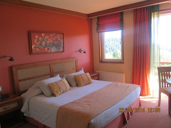 Termas Puyehue Wellness & Spa Resort: Habitación pequeña