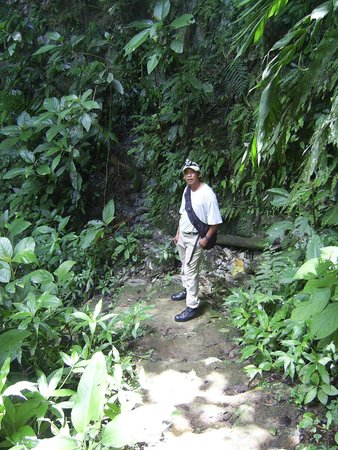 St. Herman's Cave: Hiking in through the jungle