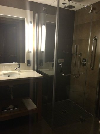 Radisson Blu Royal Hotel, Dublin: Amazing shower!