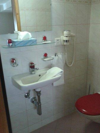 Hotel Du Boeuf: Blick ins Bad