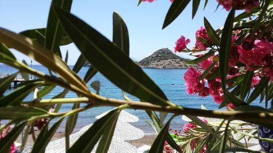 Perili Bay Resort Hotel : Datça