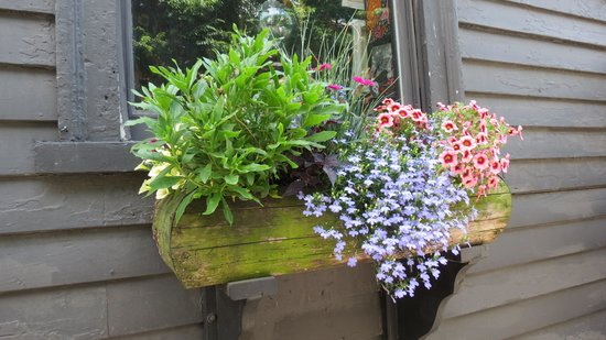 The House of the Seven Gables : summer, beautiful window boxes everywhere