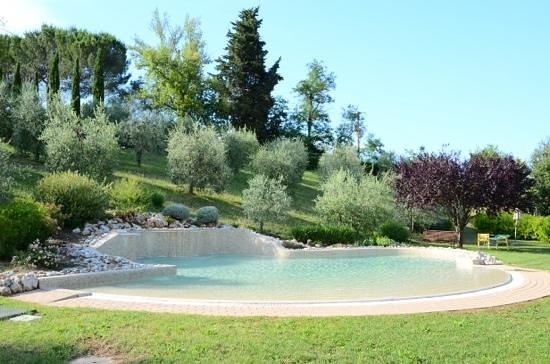 Hotel Sovestro : Smaller pool.