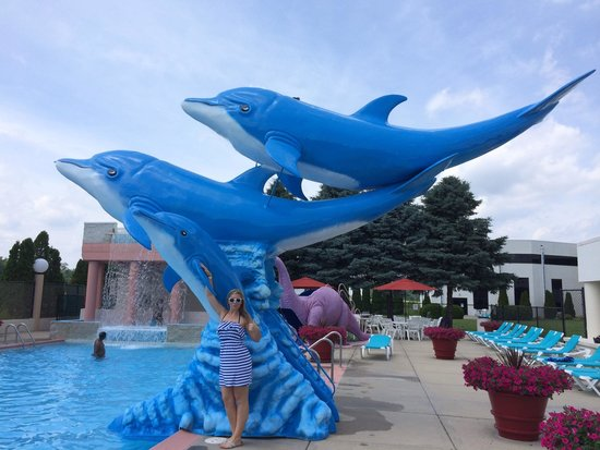Grand Marquis Waterpark Hotel & Suites: Dolphin