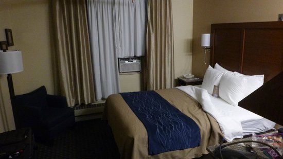 Comfort Inn Gaslamp / Convention Center: Room 1 queen bed