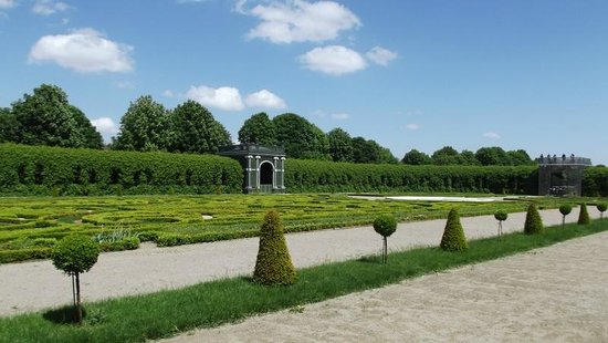 Schonbrunner Gardens: beech hedges