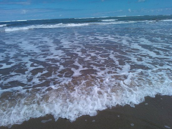 Primrose Valley Holiday Park - Haven : Clear water at Cayton Bay