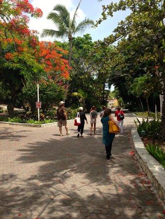 Pineapple Beach Club Antigua: The walkway past the fountain