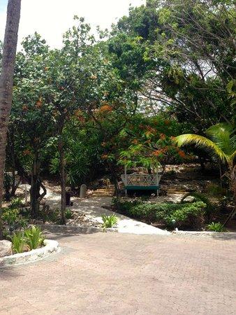 Pineapple Beach Club Antigua: foliage