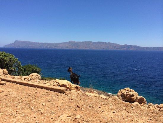 Balos Beach: Scorcio dalla strada sterrata