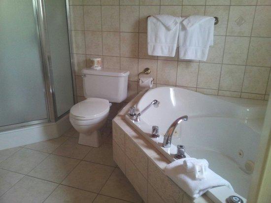 Manoir Le Tricorne: La salle de bain, spacieuse et lumineuse et le jacuzzi.