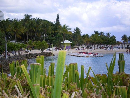 La Créole Beach Hôtel : Photo de la plage privée