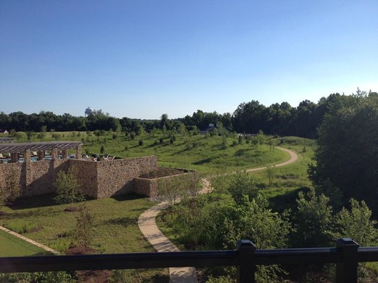 Salamander Resort & Spa: view from the room