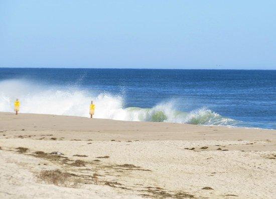 Nauset Beach: Average surf on the beach