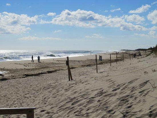 Nauset Beach: Best beach to walk