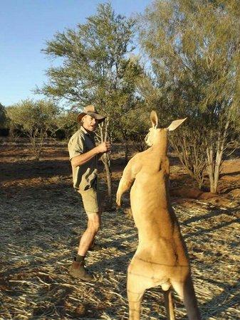 Brolga Roger Picture Of The Kangaroo Sanctuary Alice Springs - Kangaroo sanctuary alice springs
