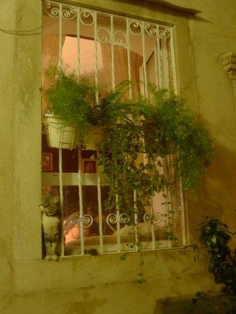 Hilton Imperial Dubrovnik : An apartment window in Dubrovnik Croatia