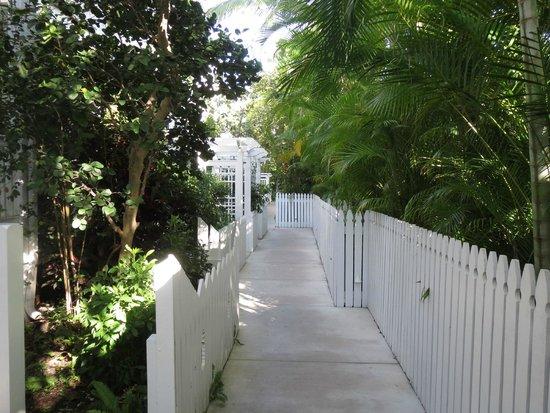 Parrot Key Hotel and Resort: Walkway between rooms