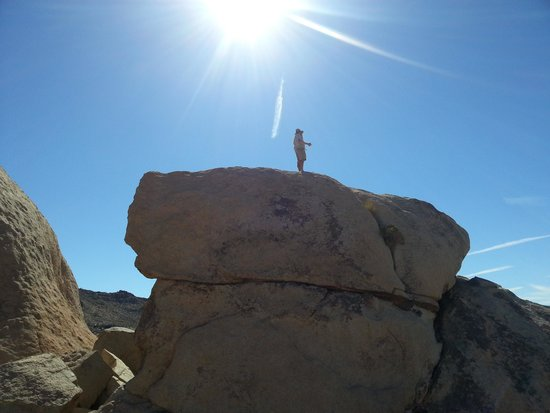 Joshua Tree Adventures - Day Tours: Our guide scoping out the terrain