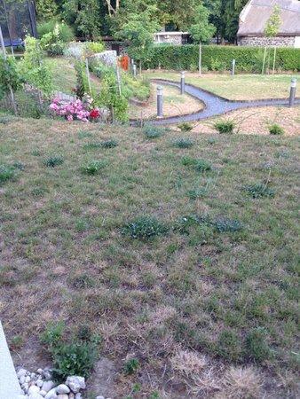 Hotel Bonvino Wine and Spa Badacsony: Garden needs tending