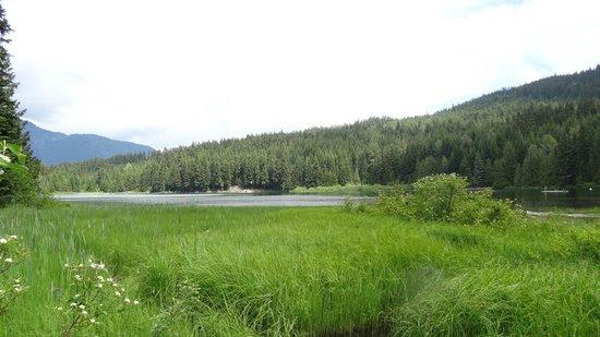 Lost Lake: Une partie du lac