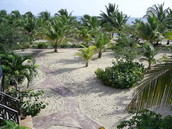 Hamanasi Adventure and Dive Resort: Beautiful view of the grounds and walkways.