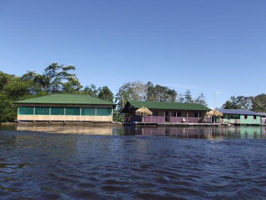 Amazon Arowana Lodge