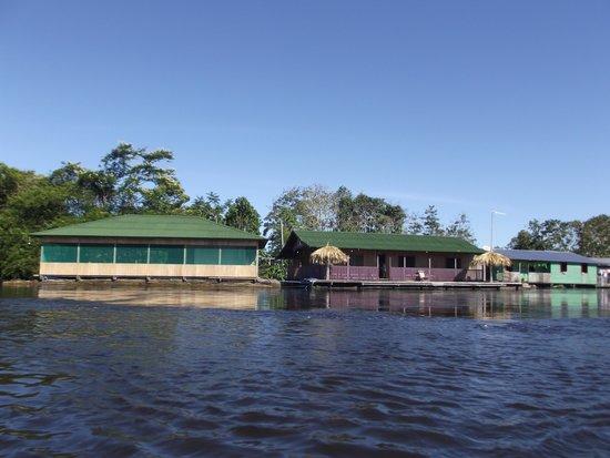 아마존 아로와나 로지