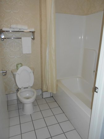 Econo Lodge - Hattiesburg / Highway 49 N.: bathroom