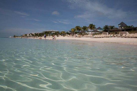Beaches Turks & Caicos Resort Villages & Spa : Spiaggia