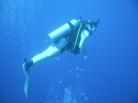 Hamanasi Adventure and Dive Resort: Great diving excursions at Hamanasi!