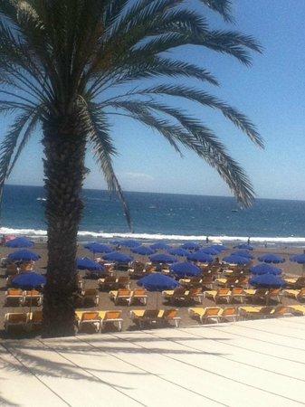 Paradise Costa Taurito: beach