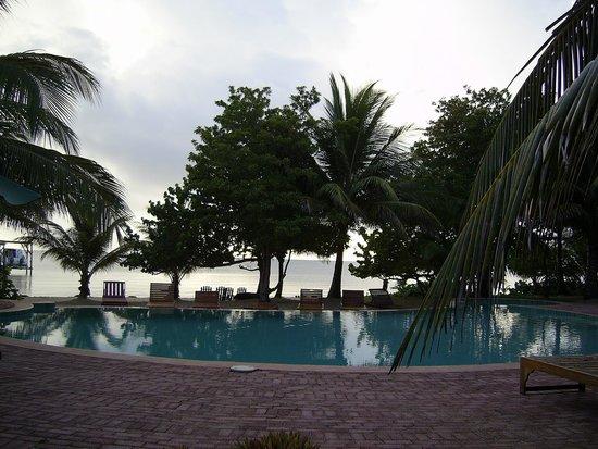 Hamanasi Adventure and Dive Resort : Pool and beach.