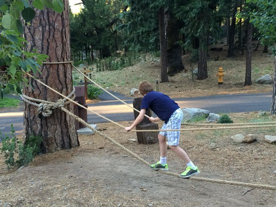 Evergreen Lodge at Yosemite: Tight rope for the kids in the Lupine area