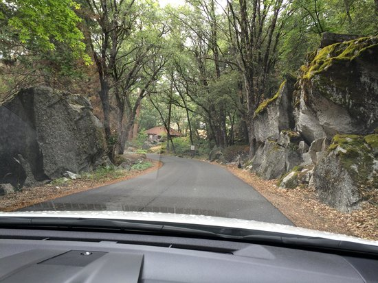 Evergreen Lodge at Yosemite: drive to Hetch Hetchy