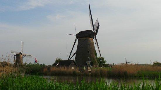 Réseau de moulins de Kinderdijk-Elshout : Окрестности