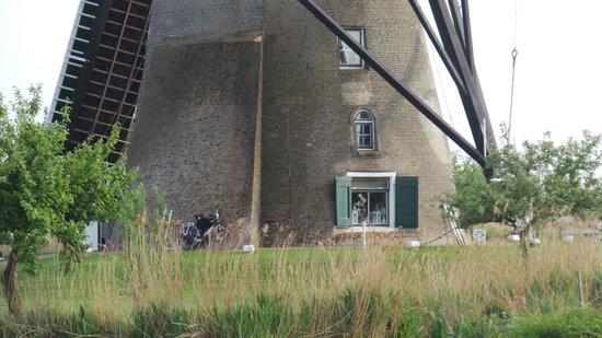 Mühlenanlagen in Kinderdijk-Elshout: Мельница вблизи