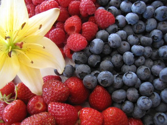 Sutherland Blueberry Bed & Breakfast: garden blueberries, strawberries and raspberries make for a delicious fresh fruit salad