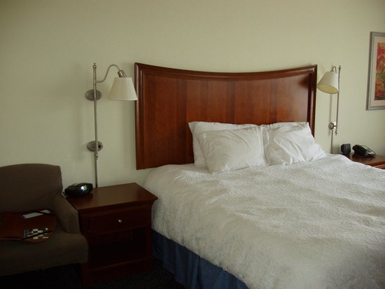 Hampton Inn Pine Grove: King bed