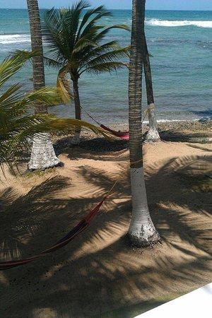 Caribe Playa Beach Hotel : Afueras