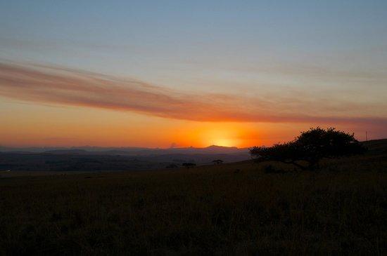 Three Tree Hill: Sunset