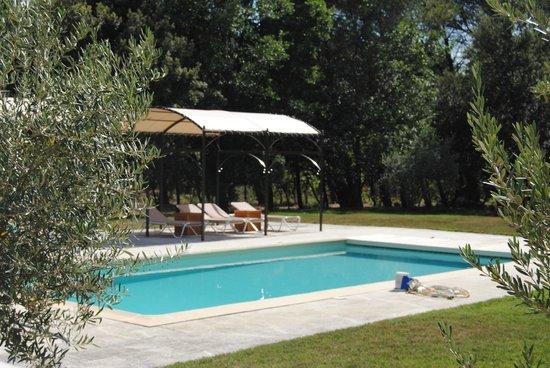 Le Bois Dormant : La piscine