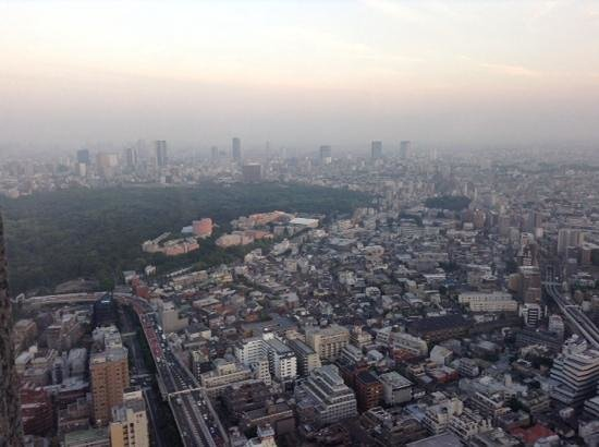 Park Hyatt Tokyo: view from the 48th floor.