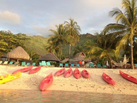 Hilton Moorea Lagoon Resort & Spa : view from lagoon looking at beach area