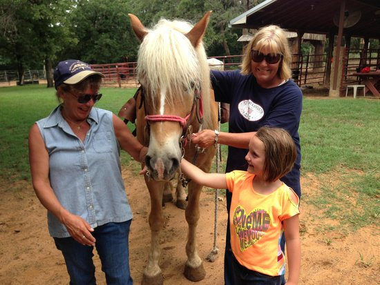 Widowmaker Trail Rides: A great experience for all..old and young.