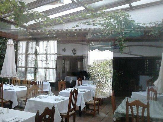 Hotel Blanco y Verde: Patio andaluz