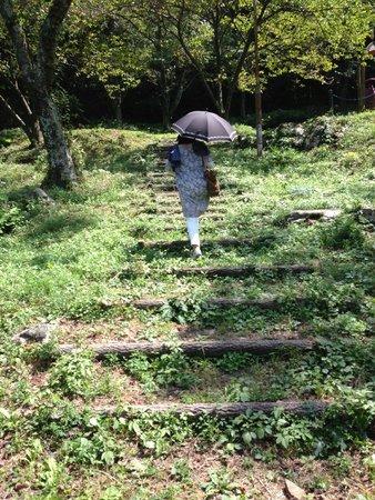 Yamanoren: 敷地内でお散歩