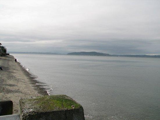 Alki Beach : The view south