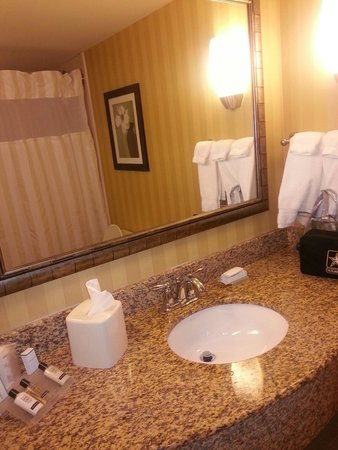 Hilton Garden Inn Pensacola Airport -Medical Center: Bathroom