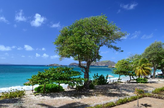 Bequia Beach Hotel: View of Friendship Bay